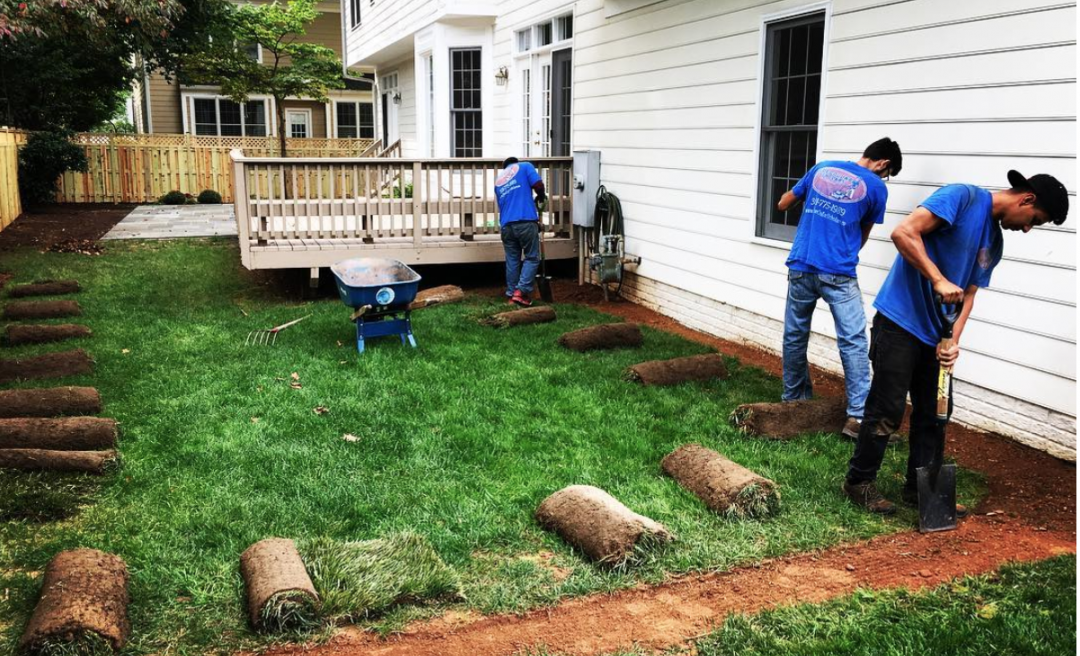 Professional Landscaping Services in Bethesda, Potomac, Chevy Chase, and NW DC